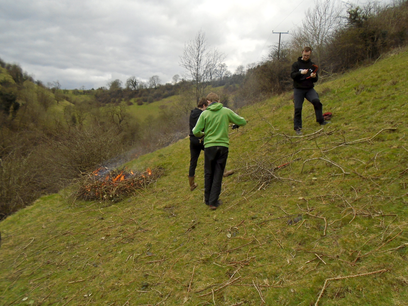 Maintenance of a previous cleared hillside